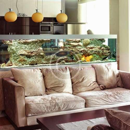 Дизайн и установка аквариумов